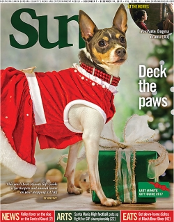 Deck the paws: This year's Last-Minute Holiday Gift Guide is for the pets and animal lovers on your list
