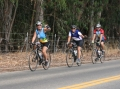 THE TAILWINDS BICYCLE CLUB OF SANTA MARIA